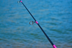 My pretty fishing pole